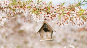 April is the Best Month to List Your Home for Sale